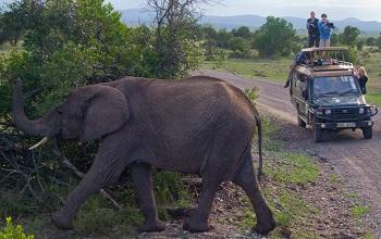 Kenya Famille Voyage