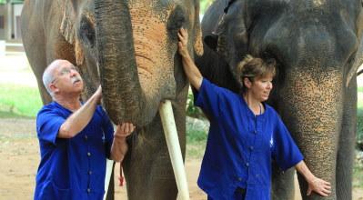 temoignage voyage sur mesure thailande